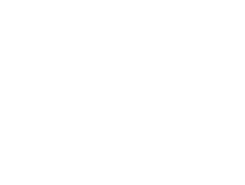 Scenic World Logo